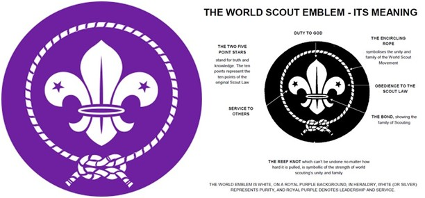 scout-stemma