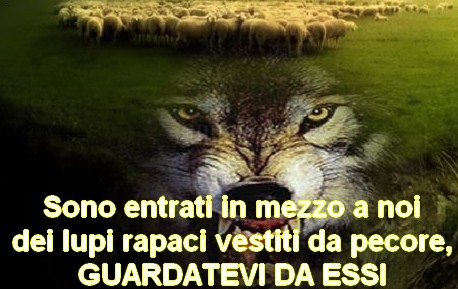 lupo-pecore-GUARDATEVI