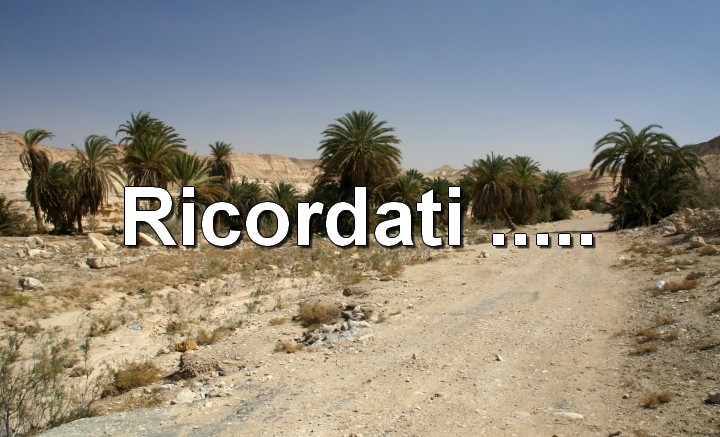 deserto-israele-blog