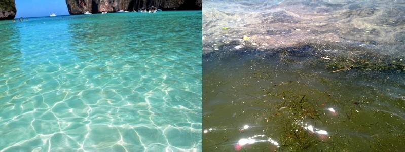 acque-cristalline-inquinate
