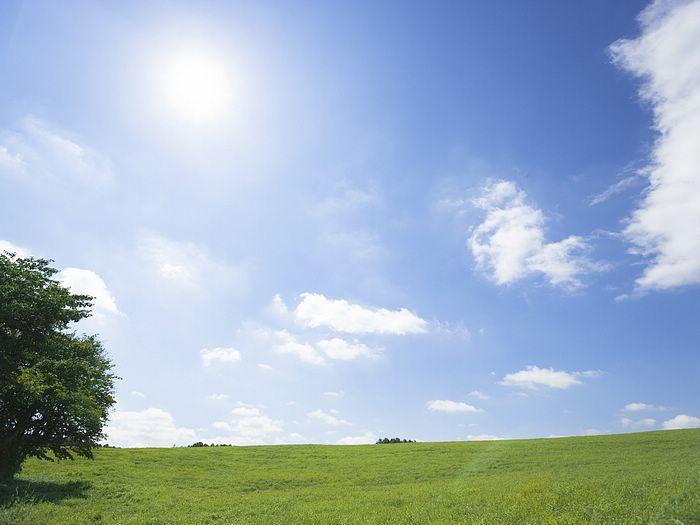 green-grassland-under-sky-photo-046